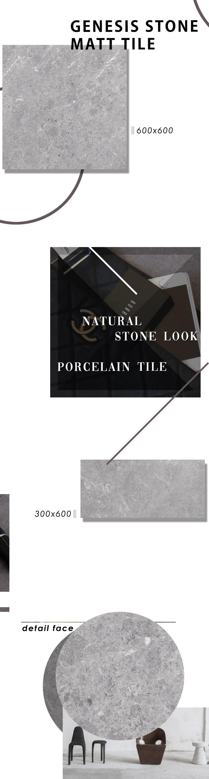 Genesis Platinum matt page